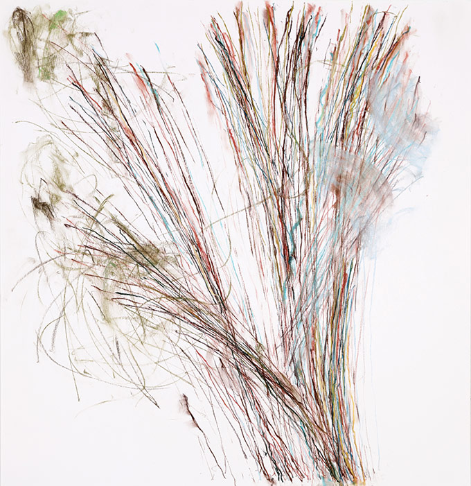 Pollination - Out Lines - Nancy Storrow